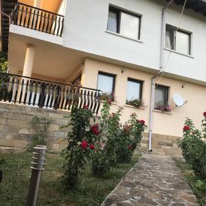 Hotel Pictures: Lazarovi Houses, Okoliite