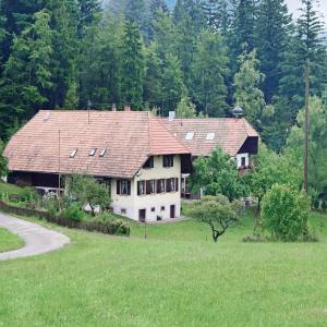 Hotelbilleder: Holiday Home Schweighausen - 03, Schweighausen