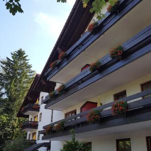 Hotel Pictures: Appartment-Hotel-Hölzl, Grünwald