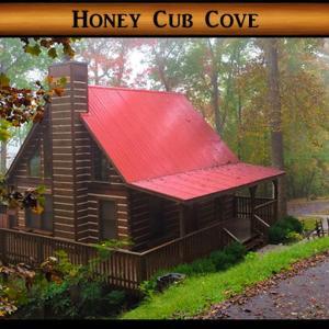 Fotos do Hotel: Honey Cub Cove Cabin, Sevierville