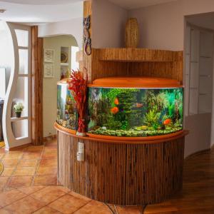 Hotel Pictures: Oscar Lida Apartment, Lida