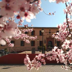 Hotel Pictures: Hotel Convento de Santa Clara, Alcazar de San Juan