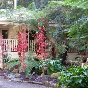 Fotos de l'hotel: Myers Creek Cascades Luxury Cottages, Healesville