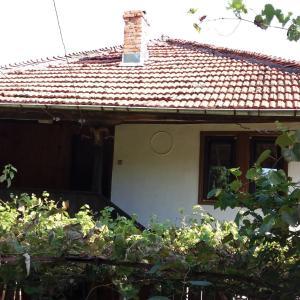 Photos de l'hôtel: House Moma Elena, Makhalnitsi