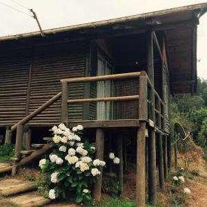 Фотографии отеля: Cabana de La Meme, Vichuquén