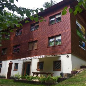 Hotel Pictures: Lesní Penzion Vranov, Vranov nad Dyjí