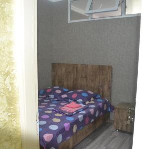 Φωτογραφίες: Apartment Kobaladze 10, Angisa