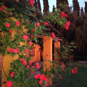 Hotelbilder: Arrebol, San Rafael