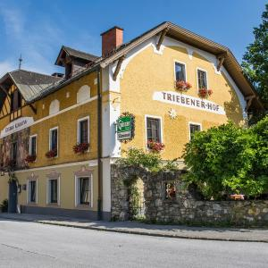 Hotelbilleder: Triebenerhof, Trieben