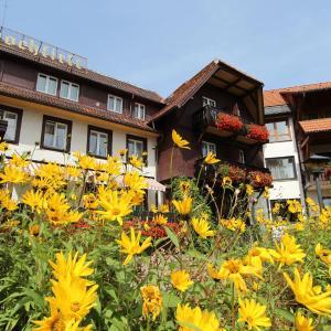 Hotelbilleder: Hotel Hochfirst garni, Lenzkirch
