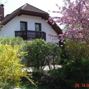 Hotel Pictures: Ferienhaus 'Werrablick-Frankenroda', Frankenroda