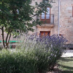 Hotel Pictures: La Casa de Lucia, Matalbaniega