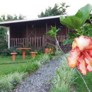 Hotel Pictures: Rancho De Moncho, Bijagua