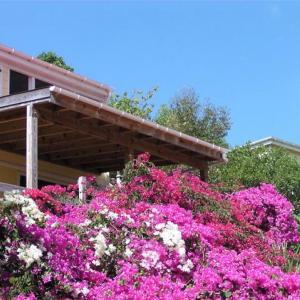 Zdjęcia hotelu: Lameshur Cottages, Concordia