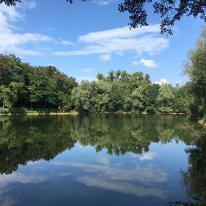 Hotelbilleder: Alte Heimat, Schwegenheim