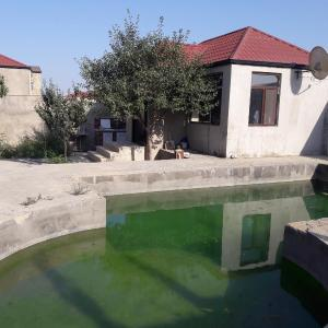 Hotel Pictures: Lotus Guesthouse, Fatmayı