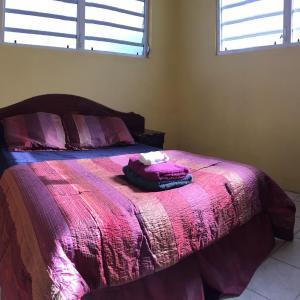 Hotellikuvia: Mulberry Cot, Bridgetown