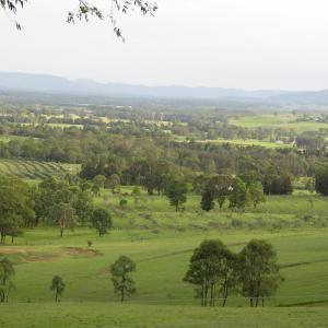 Zdjęcia hotelu: Hill Top Villas, Lovedale