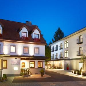 Hotel Pictures: Hotel & Restaurant Wilder Mann, Aalen