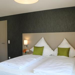 Hotelbilleder: BA Hotel, Babenhausen