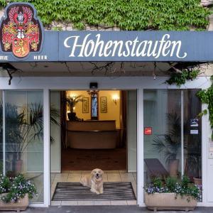 Hotelbilleder: Hotel Hohenstaufen, Göppingen