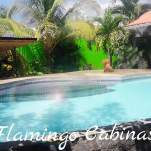 Hotel Pictures: Flamingo Cabinas, Playa Flamingo