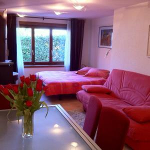 Hotel Pictures: Appartement Lydie, Le Landeron