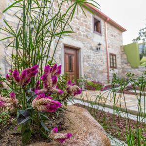 Hotel Pictures: Alojamiento O Caminante, Villareda