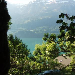 Hotel Pictures: Ferienwohnung, Niederried