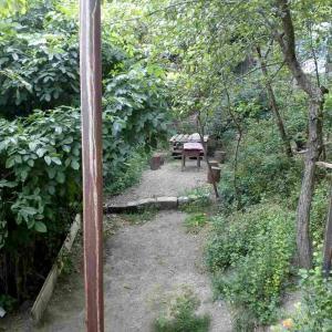 Hotellikuvia: Come an rest, Borjomi