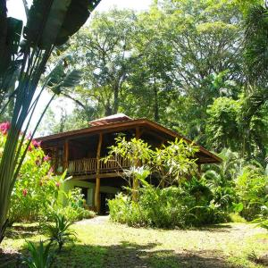 Hotel Pictures: Cocles Beach Villa, Cocles