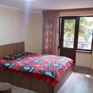 Φωτογραφίες: Comfortable Apartment in Abastumani, Abastumani