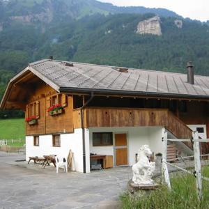 Hotel Pictures: Eichhof, Brienzwiler