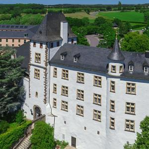 Hotel Pictures: Victor's Residenz-Hotel Schloss Berg, Nennig