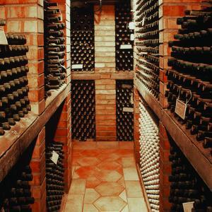Hotel Pictures: Vinný sklep u Chytilů, Milotice