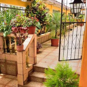Hotel Pictures: Hostal del Rio, Puyo