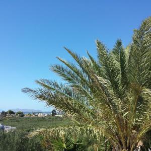 Фотографии отеля: Baglio il Giovinetto, Марсала