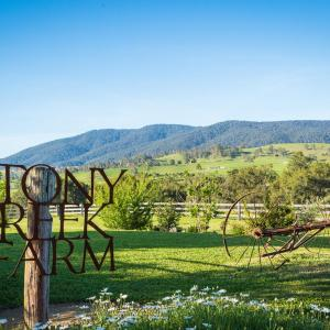 ホテル写真: Stony Creek Farm, Bega
