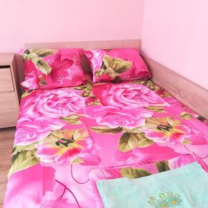 Hotellikuvia: Room 101, Hisarya