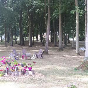 Hotel Pictures: Camping Le Bois Fleuri, Illiers