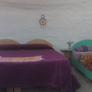 ホテル写真: Cocoonshostel, El Mollar