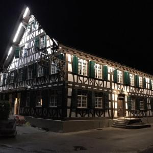 Hotel Pictures: Gasthaus zum Goldenen Kreuz, Rafz