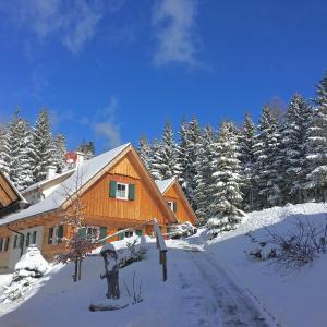 Hotellbilder: Dorner Hütten in Klippitztörl, Klippitztorl