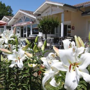 Hotel Pictures: Au P'tit Creux des Landes, Ychoux