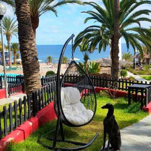 Hotel Pictures: First line ocean bungalow, Playa del Aguila