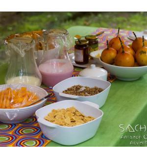 Hotel Pictures: Sachapi Adventures, Puerto Francisco de Orellana