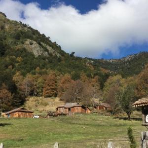 Hotel Pictures: KuyKuy Lodge, Malalcahuello