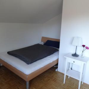 Hotel Pictures: Ferienwohnung MARI, Schönau im Schwarzwald