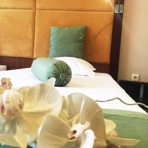 Hotelbilleder: Hotel Rody, Silistra