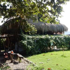 Hotel Pictures: El Ocelote Ecolodges, Palomino